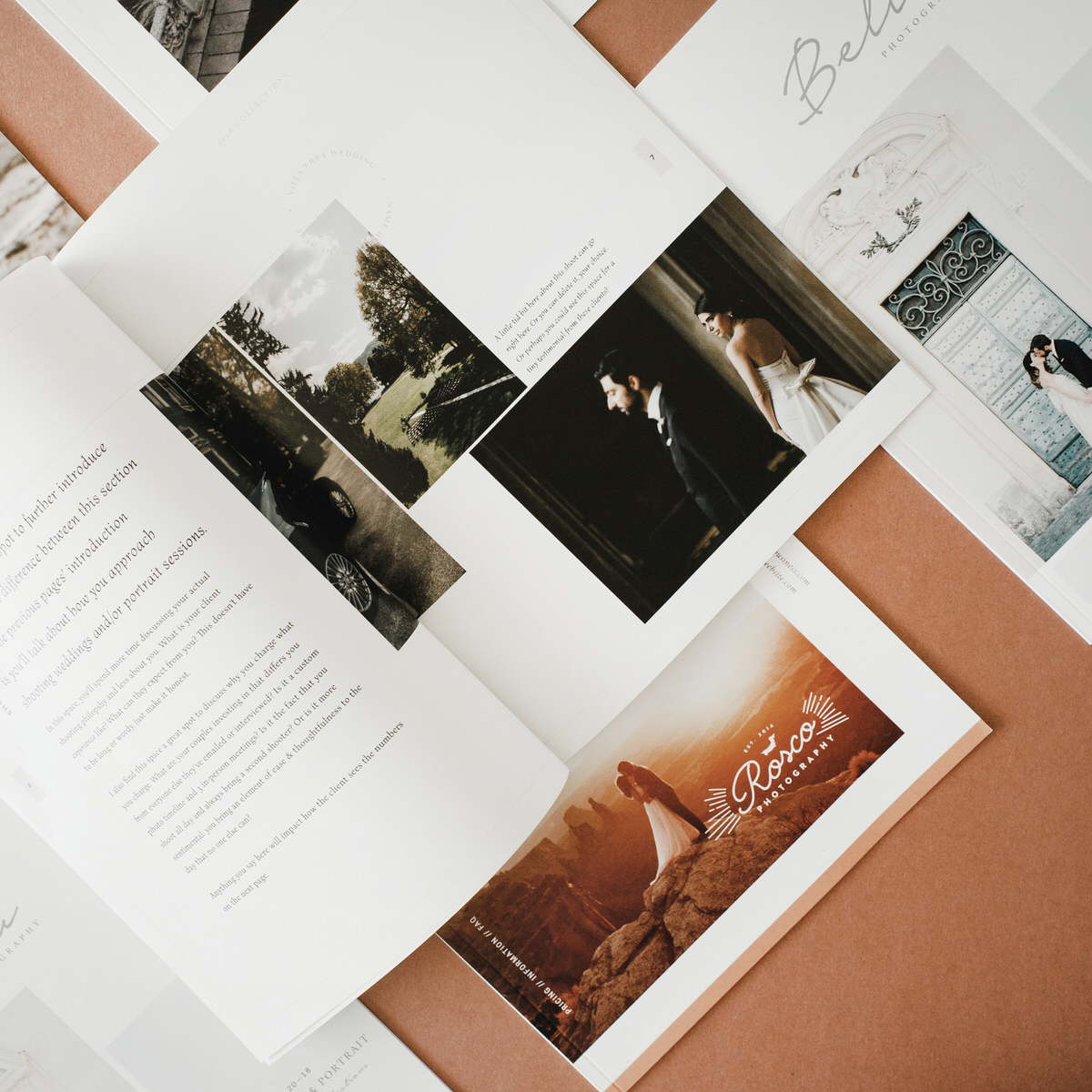 Client Guide Design Templates – India Earl Education